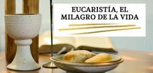 Eucaristía, El milagro de la vida.